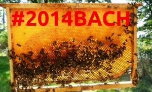 bach2014