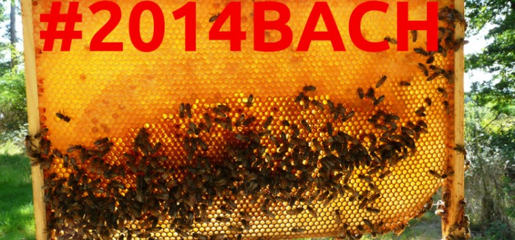 BACH 2014: First annual Bay Area Hackerspaces unconference this weekend!